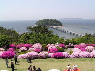 200904gamagori