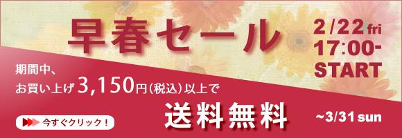 Sale_201302_2